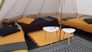 Des lits installés sous une tente dans le cadre de notre formule bivouac